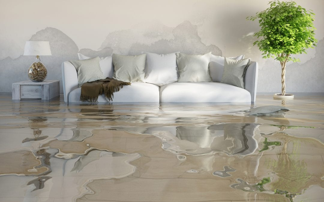 Cleaning Your Omaha Home After Water Damage