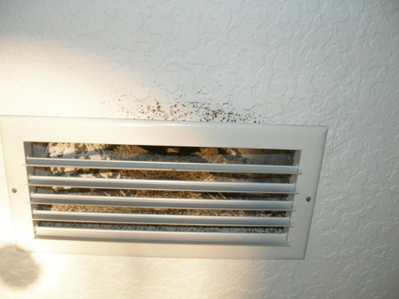How Does Mold Form in Air Ducts?